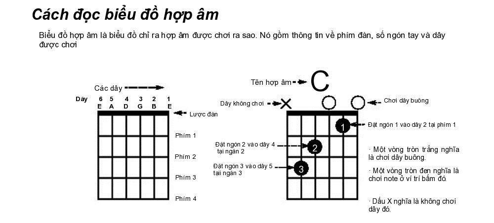 Hướng dẫn cách học guitar đệm hát cho người mới bắt đầu