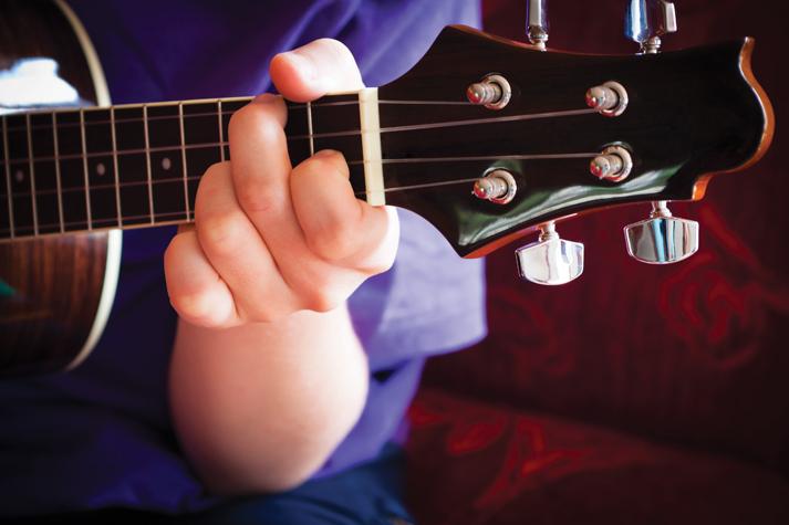 hoc ukulele