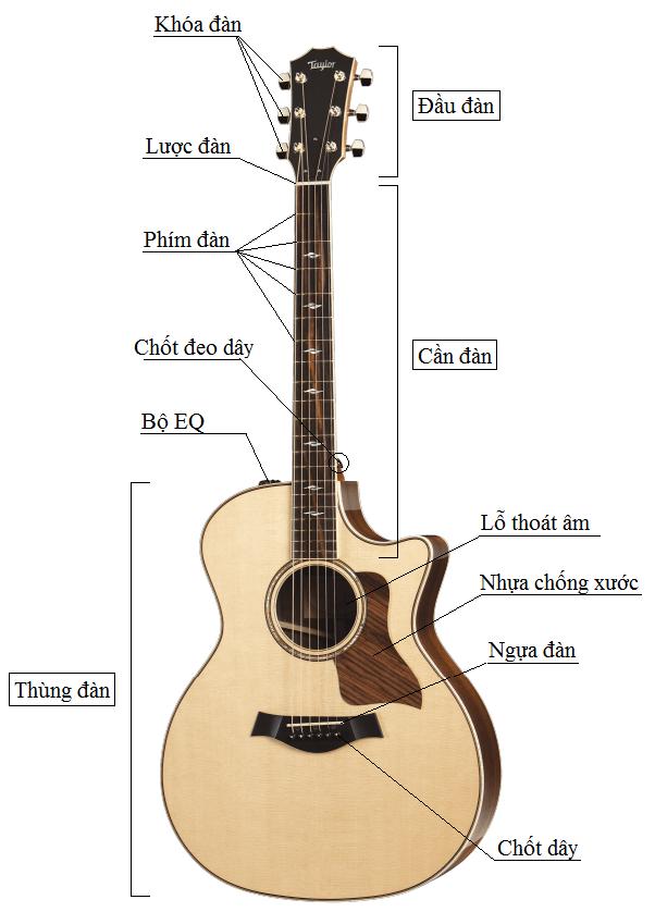 Bài 1: Cấu tạo cây đàn guitar