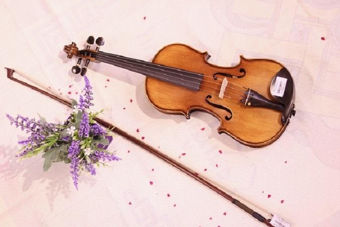 Cách chọn Đàn Violin cho người mới bắt đầu tốt nhất TPHCM | THU NHẠC