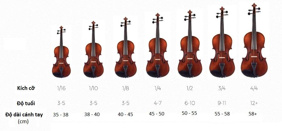 Kích cỡ đàn Violin